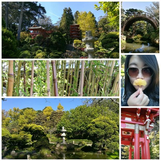 collage-japanese-tea-garden