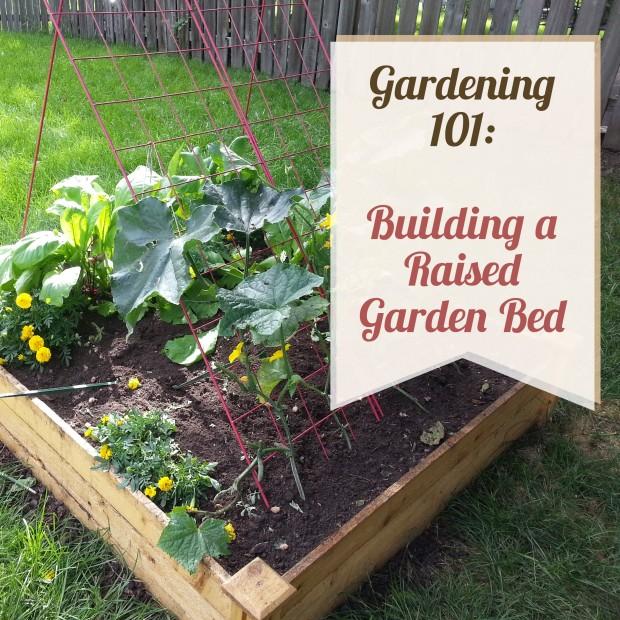 Garden Bed title photo.jpg